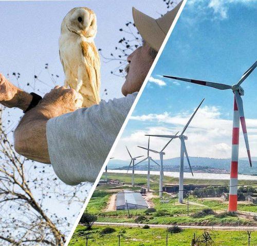חדשנות ירוקה בעמק המעיינות
