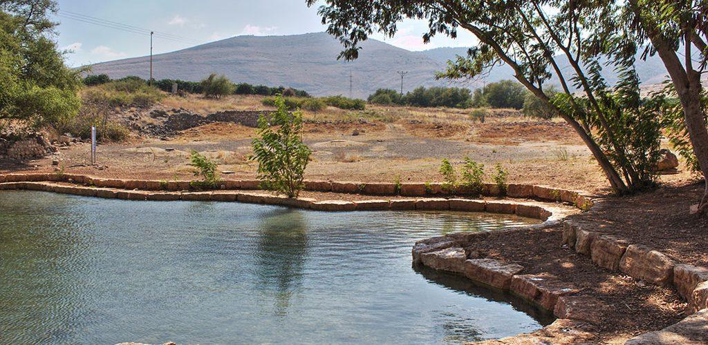צילום: Yair Aronshtam | מתוך ויקיפדיה